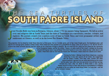 Padre Island Graphic